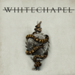 WHITECHAPEL + Guest