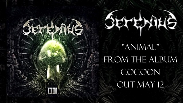 SERENIUS - Nouvelle chanson ''Animal''!